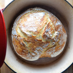 Beginner's No Knead Dutch Oven Bread
