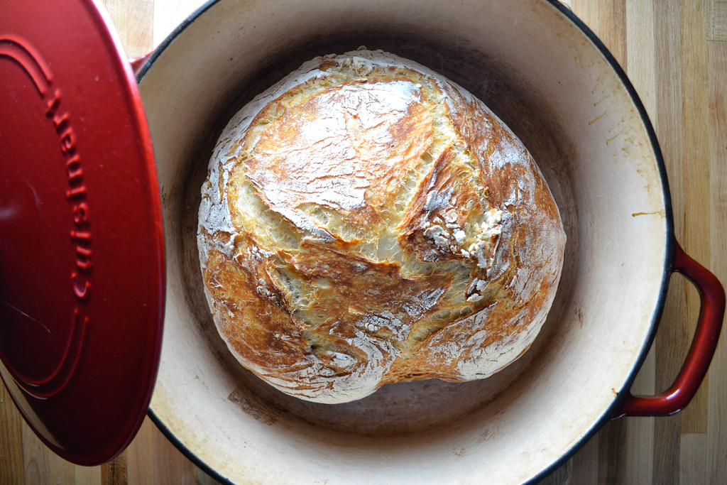 Beginner's No Knead Dutch Oven Bread | Things I Made Today